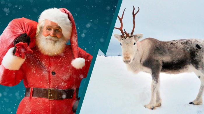 Just how does jolly old Saint Nick deliver all those presents in just one night? We crunch the numbers.
